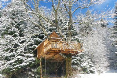 Nids des Vosges